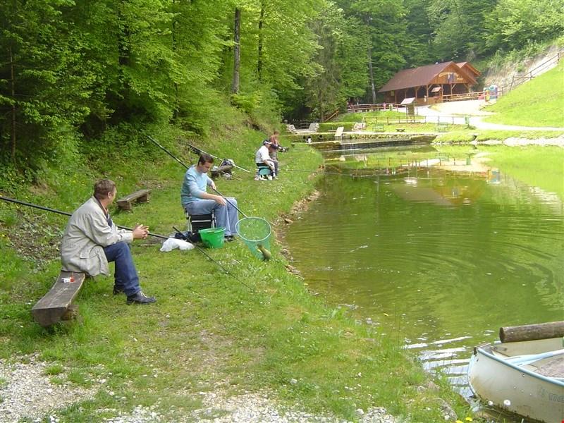 Turistična kmetija Cokan - ribnik Steska